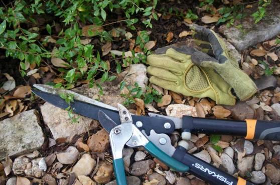 Web-Gardening-Instruments