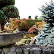 Snapseed_Final-Gardens-DSC03895