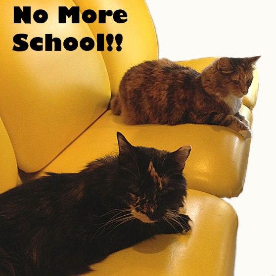 Final-No-More-School-IMG_07