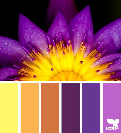 FloweredPalette