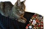 Black Pillowcase Pet Bed