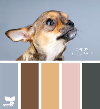 PuppyTints610