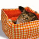Shopify-Plaid-1-Md-Pet-Bed